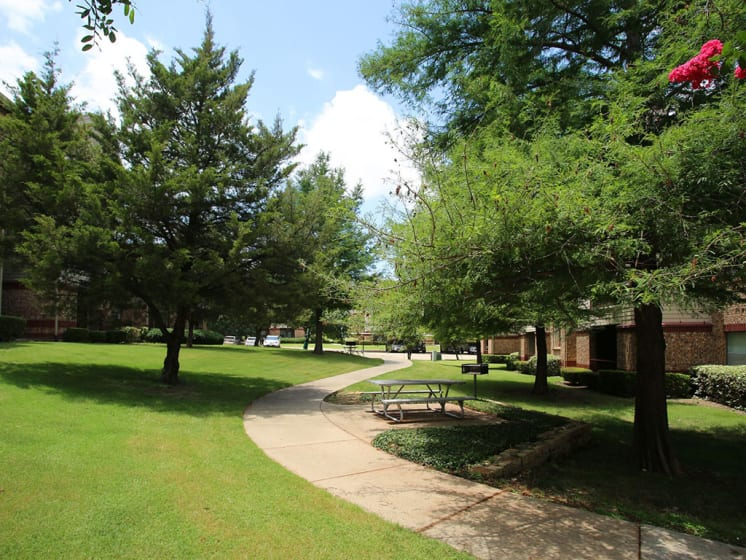 Shady Walking Pathway Surrounded By Trees at Lost Spurs Ranch Apartments in Roanoke, Texas