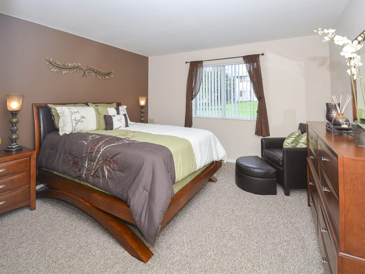 Spacious Bedroom with Brown Accent Wall and Large Double Window