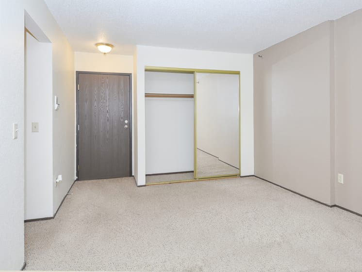 Spacious Bedroom with Plush Carpeting and Mirrored Sliding Closet Doors