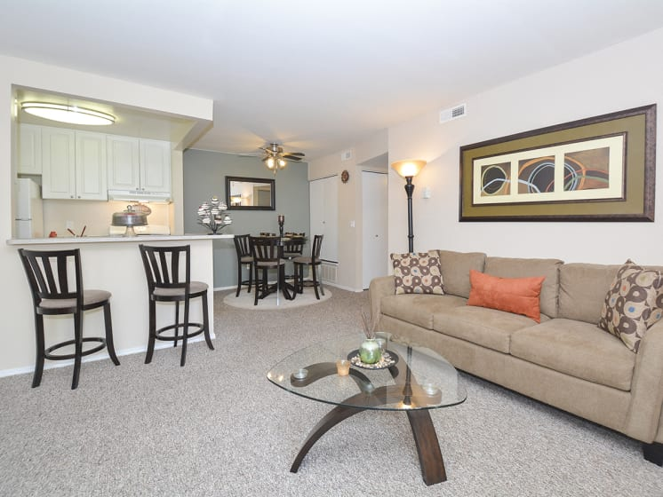 Spacious Open Living Room with Carpet
