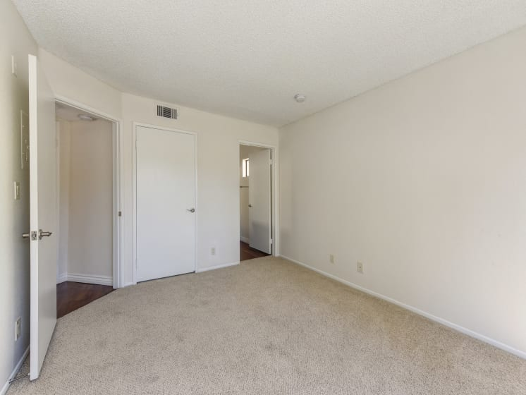 Bedroom with Carpet, White Walls and Open Closet