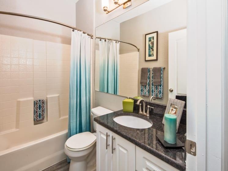 Updated Bathrooms Grand Reserve Tampa Fl 33647