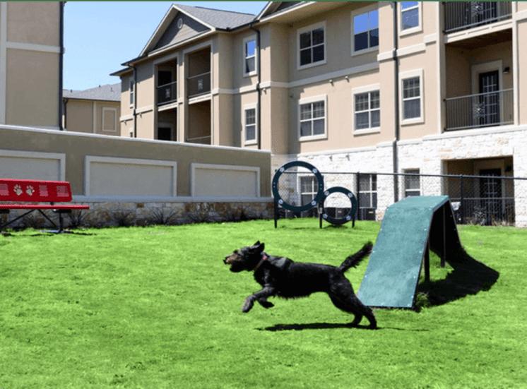Leash-Free Pet Park at Arrington Ridge, Texas