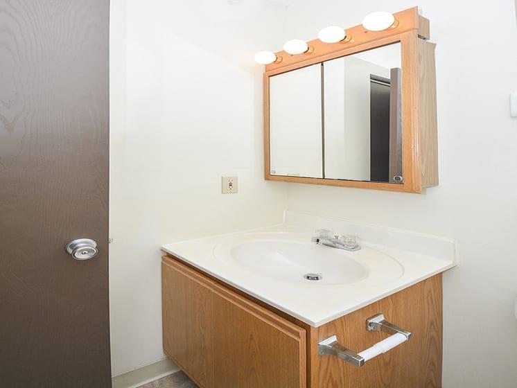 Bathroom Vanity with Mirrored Medicine Cabinet