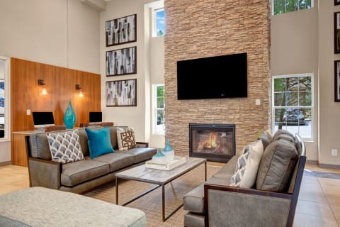 Modern Clubhouse Lounge with Seating Area, Fireplace, and TV
