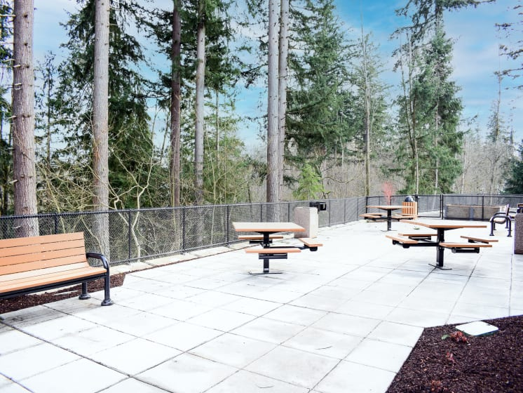 Picnic Area With BBQ Grilling Station at Manor Way, Everett, Washington, 98204