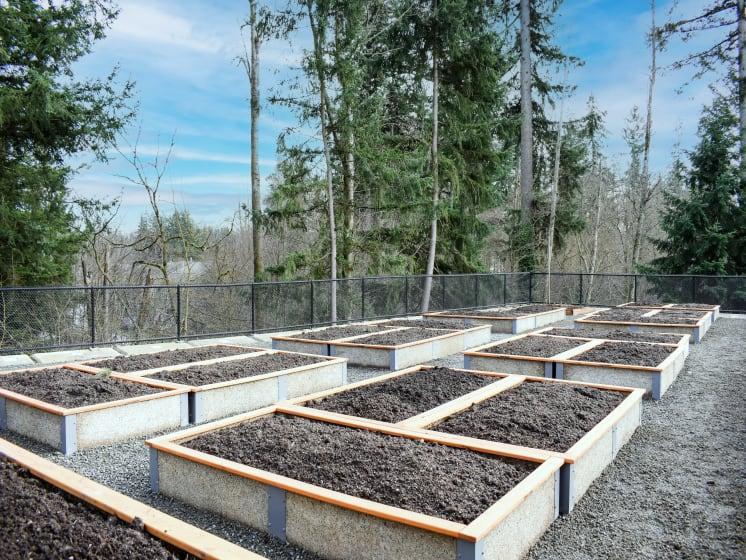 Garden Plots at Manor Way Apartments, WA 98204