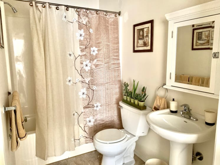 Bright Bathroom at Blueberry Hill Apartments, Rochester, NY