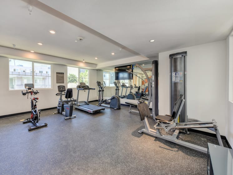 Fitness Center with Ellipticalls, Leg Press, Excercise Bikes, and Mounted Flat Screen Television