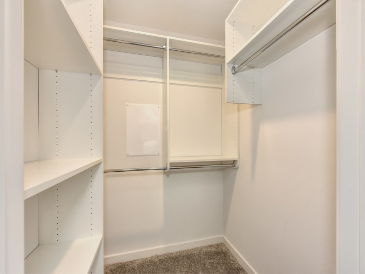 Lare Closet with Shelves and Carpet