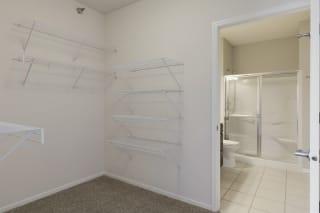 Master walk-in closet at Waterstone Place, Minnetonka, MN