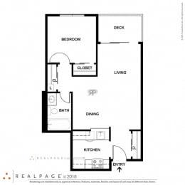 1 Bed, 1 Bath, 570 square feet floor plan B