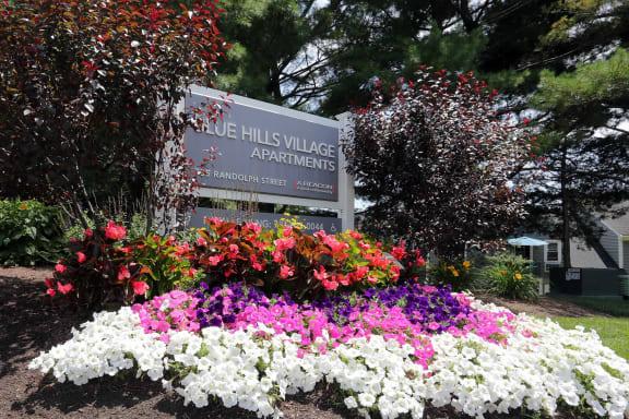 Blue Hills Village property image