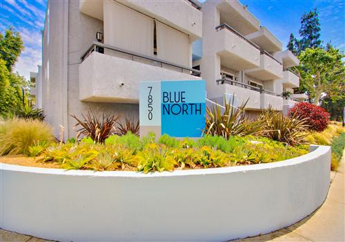 Blue North property image