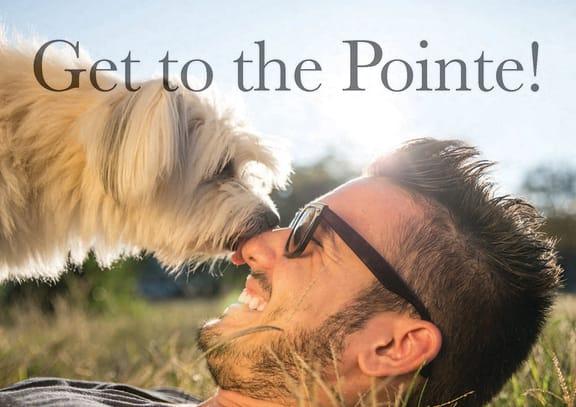 Pinyon Pointe property image