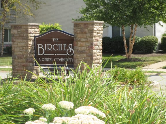The Birches Apartments property image