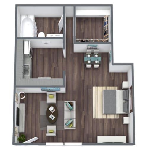 Floor Plan  Studio 1, 3D Floor Plan