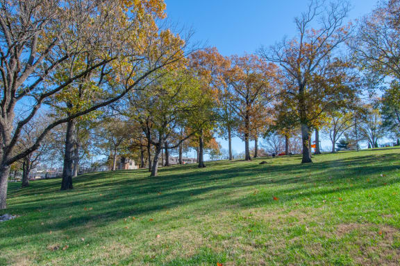 Beautiful Park Like Setting at Nob Hill Apartments, Tennessee