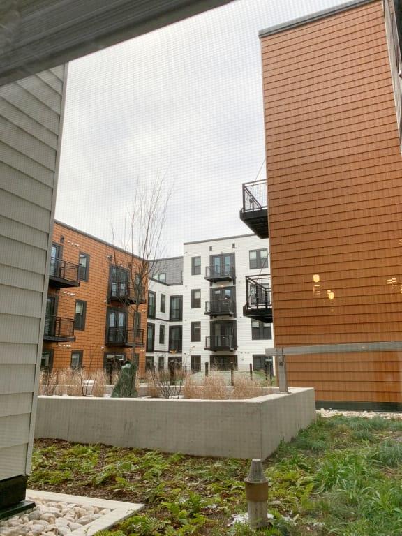 Apartment 237_View