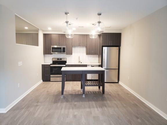 Apartment 250_Kitchen