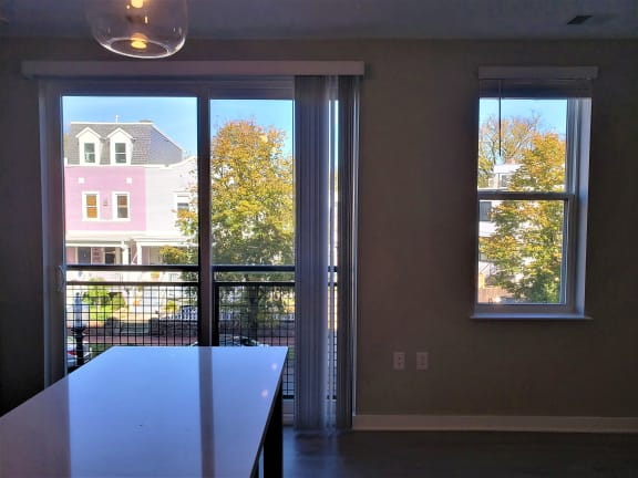 Apartment 281_View