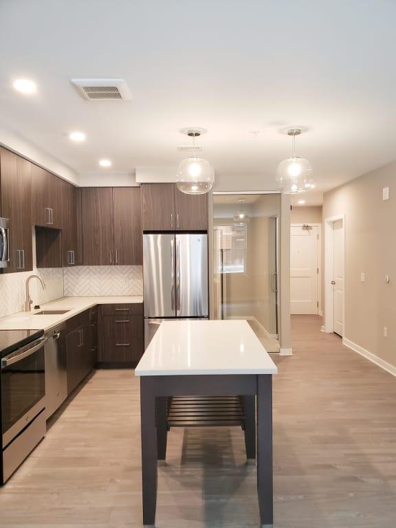 Apartment 295_Kitchen-Entrance