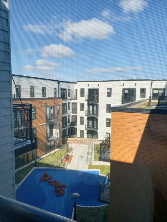 Apartment 555_View