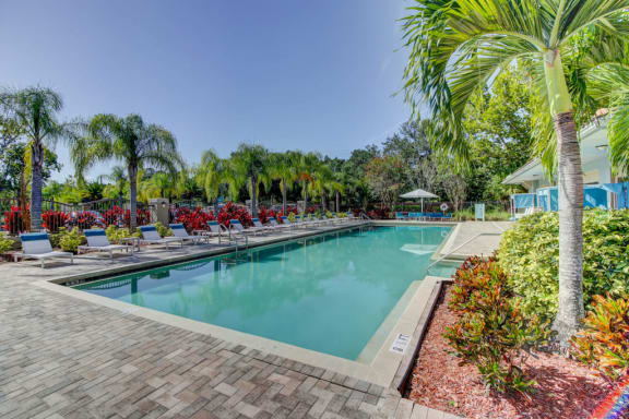 pool with sundeck at the preserve at westchase in tampa florida