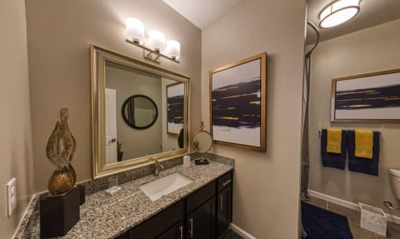 Spa-Inspired Bathrooms at Davies Ranch, Texas, 78754