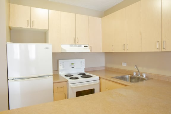 bachelor suites for rent in edmonton