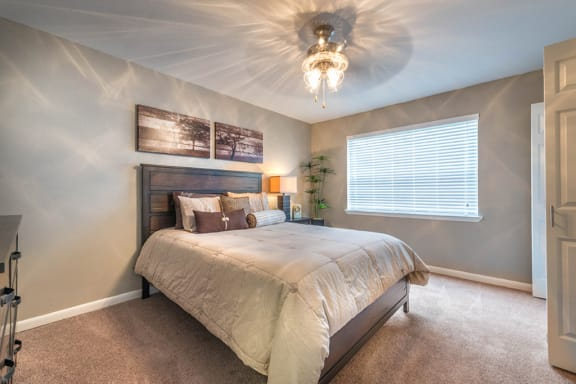 large bedrooms with ceiling fans and plush carpets