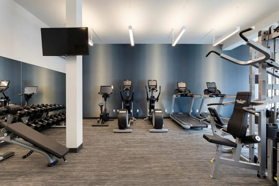 Free weights and decline and dumbbell benches in fitness center in Minnetonka apartment