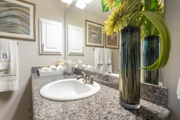 This is a picture of the bathroom.