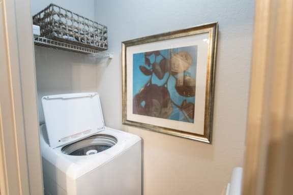 This is a picture of the laundry area.