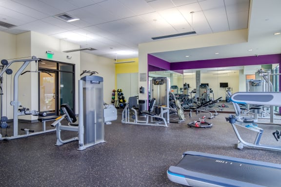 Free Weights in 24-Hour Fitness Studio at Discovery West Apartments in  Issaquah, WA