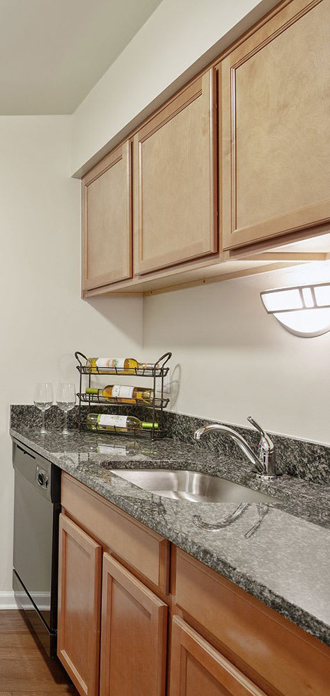 Granite Countertop Kitchen at Lakeside Village Apartments Clinton Township Michigan