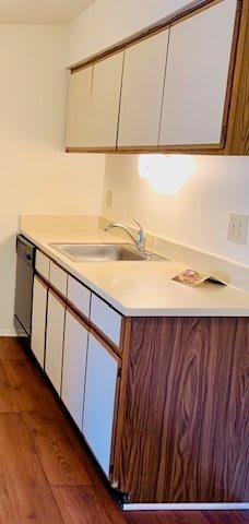 Classic Kitchen at Lakeside Village Apartments Clinton Township MI