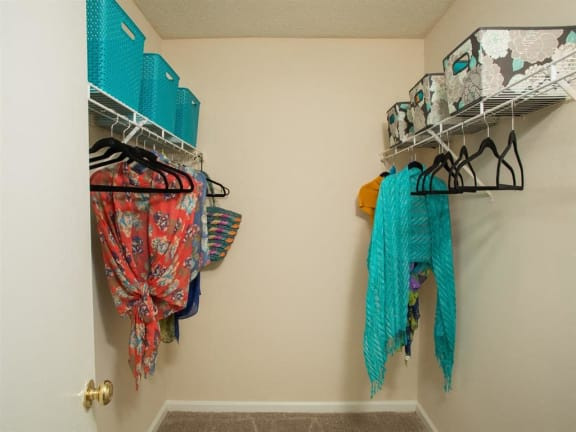 Walk-In Closets With Built-In Shelving at Litchfield Oaks Apartments, Pawleys Island, SC, 29585