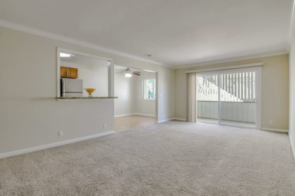 carpeted living room at Magnolia Place, Sunnyvale