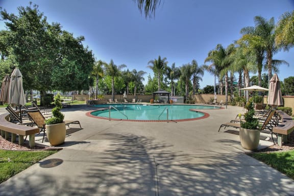 resort style pool at The Arbors at Mountain View, Mountain View, CA