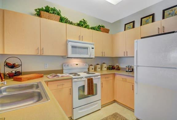 Modern Kitchen at Greenfield Village in San Diego, CA