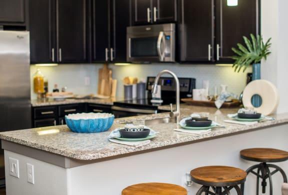 gourmet kitchen in houston texas apartments