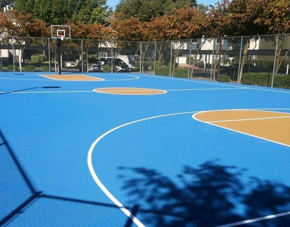 Basket Ball Court  l The Edge Apartments in Davis, CA