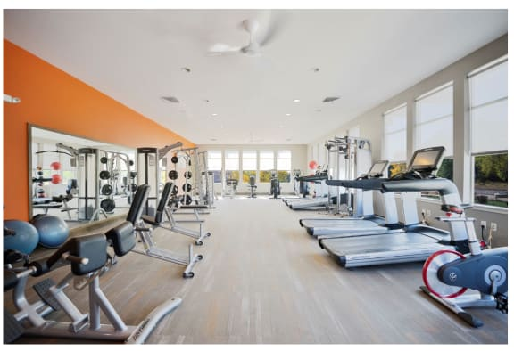 24-Hour Health and Fitness Club with Free Weights