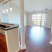 Expansive Living Room Wood Floors