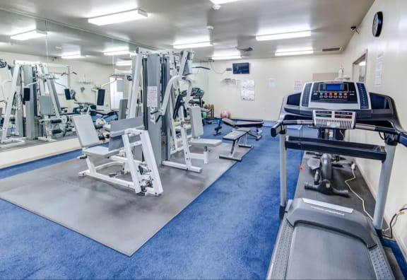 Large Fitness Center with updated equipment at Walnut Creek Apartments in Kokomo, IN
