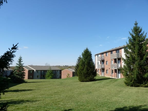 Expansive Lawn and Wood Area at Fox Run Apartments in Dayton, OH