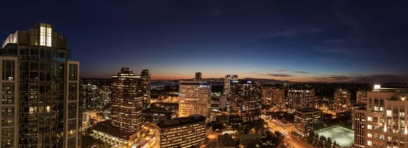 Bellevue, WA Night View