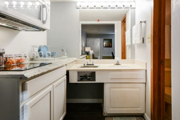studio kitchen facing sink at Plato's Cave Apartments Branson, MO 65616