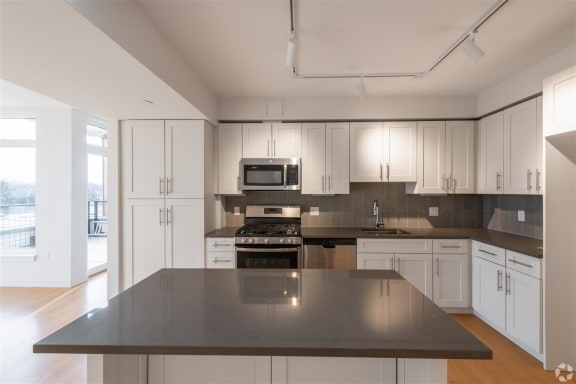 Modern Kitchen With Custom Cabinet at Park77, Cambridge